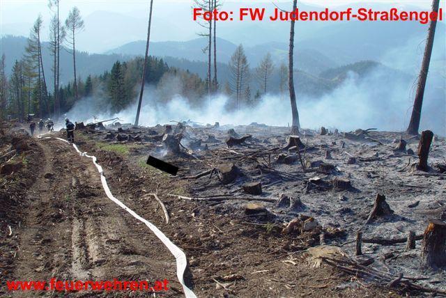 Waldbrandbekämpfung am Plesch 1