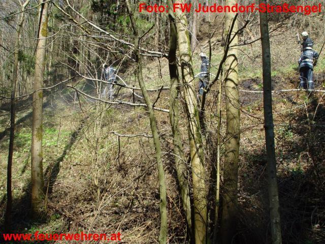 Waldbrand im Luttengraben