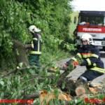Starke Windböen sorgen für Dauereinsatz in Graz