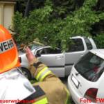 Baum stürzte auf fahrenden PKW