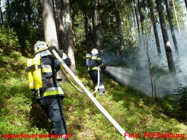 Waldbrand in Woroujach bei Bleiburg