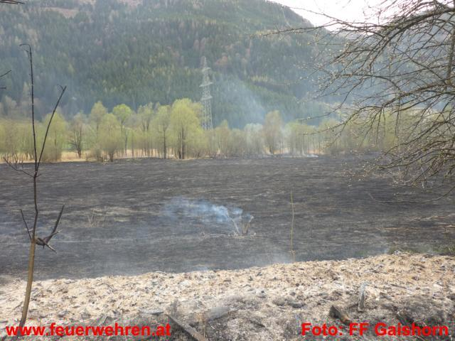 Schilfgürtelbrand nahe Treglwang fordert Einsatzkräfte