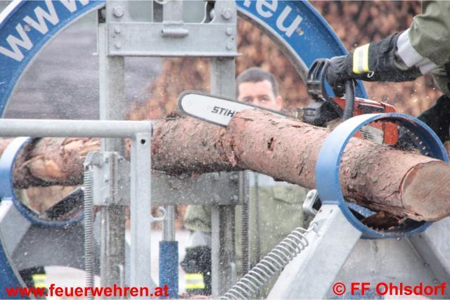 Forst-Fachschulung - Richtiges Arbeiten mit der Motorkettensäge