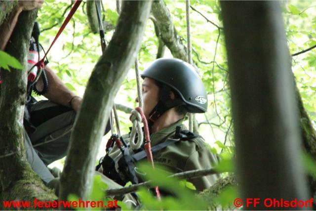 Paragleiter abgestürzt - Einsatzübung in den Traunauen mit der Bergrettung