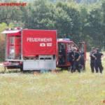 FF Fernitz
