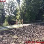 FF St. Georgen i.A.: Fund Schlangenhaut Abgottschlange (Boa Constrictor) 3