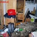 FF Trumau: Defekt einer Sauna führt zu Kellerbrand 6