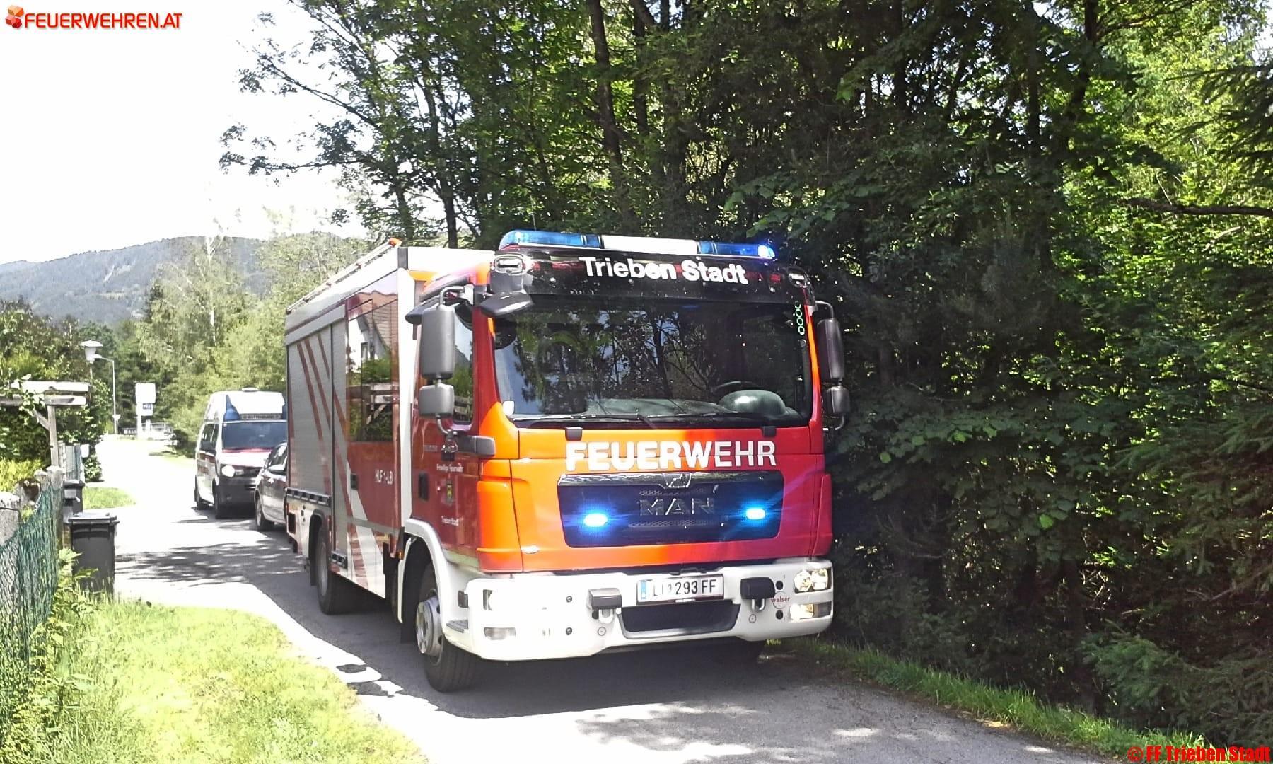 FF Trieben Stadt