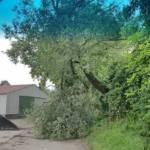 FF Pettendorf: Unwettereinsatz und Sturmschaden 4