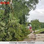 FF Pettendorf: Unwettereinsatz und Sturmschaden 3