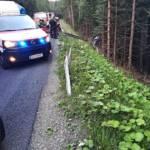 BFVDL: Verkehrsunfall auf der L619 5