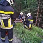 BFVDL: Verkehrsunfall auf der L619 7