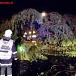 FF Nestelbach: Verkehrsunfall auf der Südautobahn 1