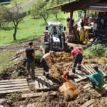 FF Steinberg-Rohrbach: Kuh in Misthaufen versunken 7