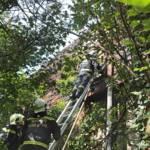 FF Brunn am Gebirge: Einsatzreicher Tag 8