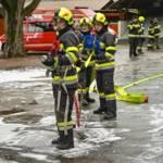 Branddienstleistungsprüfung in Seiz