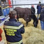 Auszeichnungen durch den Wiener Tierschutzverein