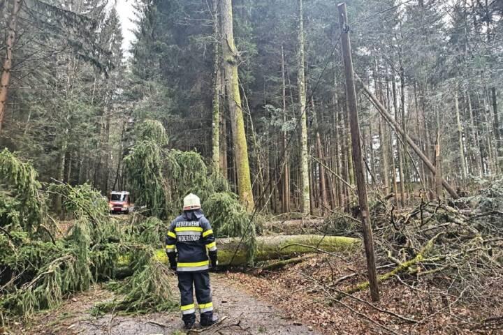 Zahlreiche Sturmeinsätze im Bereich Deutschlandsberg