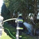 Heckenbrand in Pölfing-Brunn