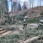 Wieder zahlreiche Sturmeinsätze im Bezirk Deutschlandsberg
