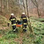 Tierrettung in St. Ulrich im Greith
