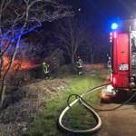 Waldstück in Flammen