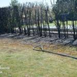 Brand einer Hecke und der angrenzenden Garage