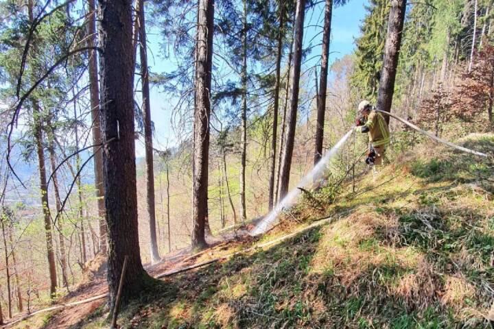Entstehender Waldbrand rechtzeitig entdeckt