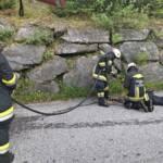 Feuerwehr befreite Katze aus Entwässerung