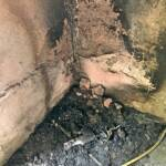 Kellerbrand in Trag endete glimpflich