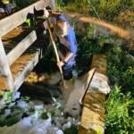 Starke Schaumbildung auf Puchheimer Gewässer