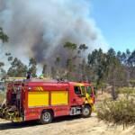 Feuerwehrauto bei Waldbrand