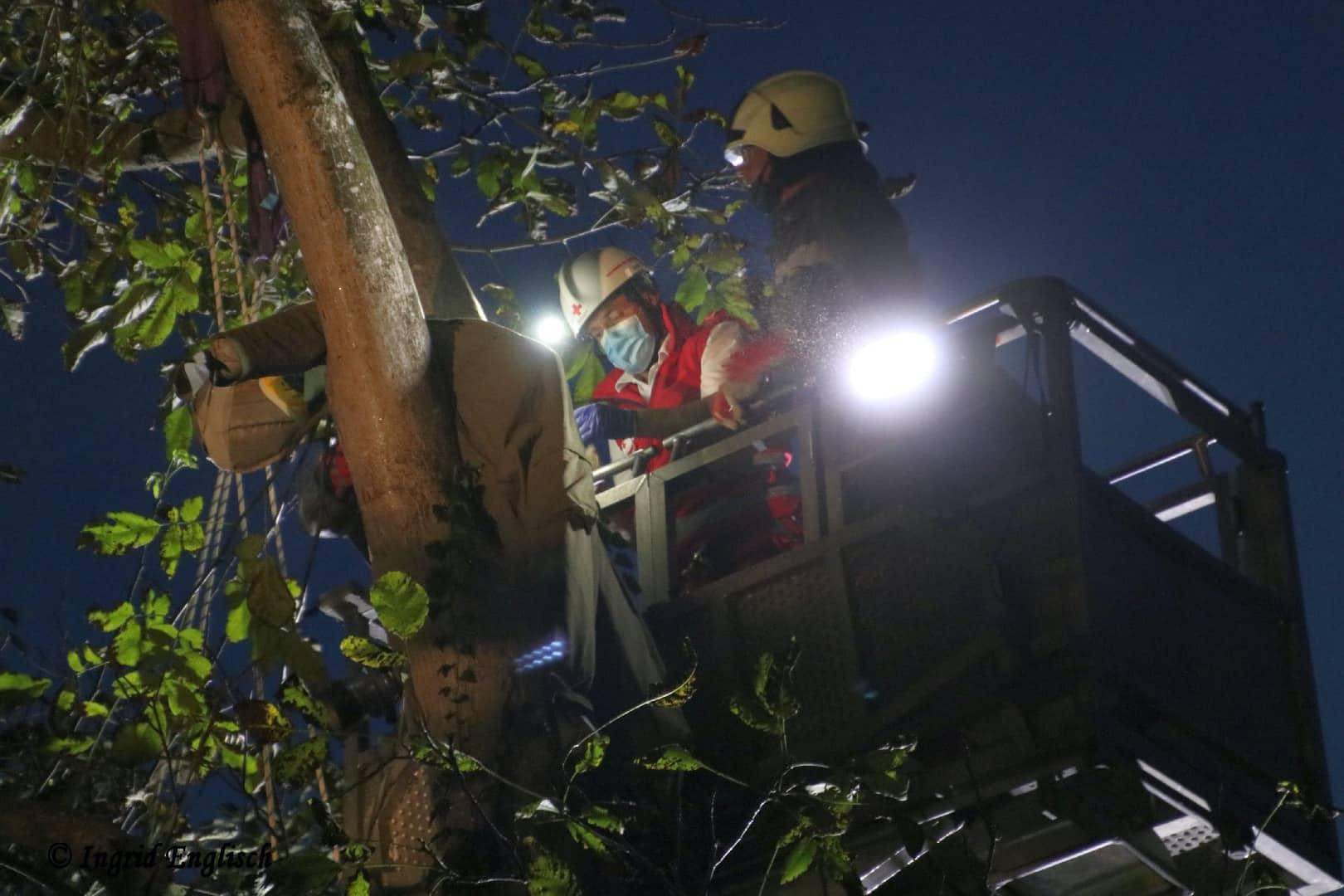 Zwei Personen aus Baumkrone gerettet
