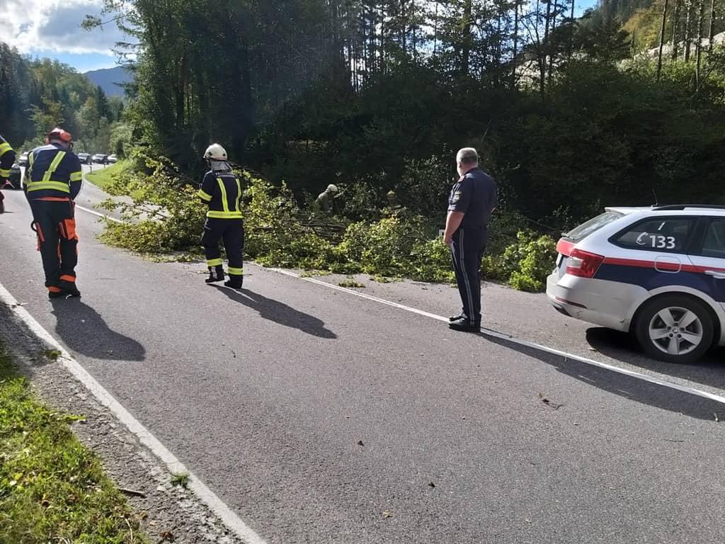 Sturmschäden in Mitterweissenbach und Bad Ischl