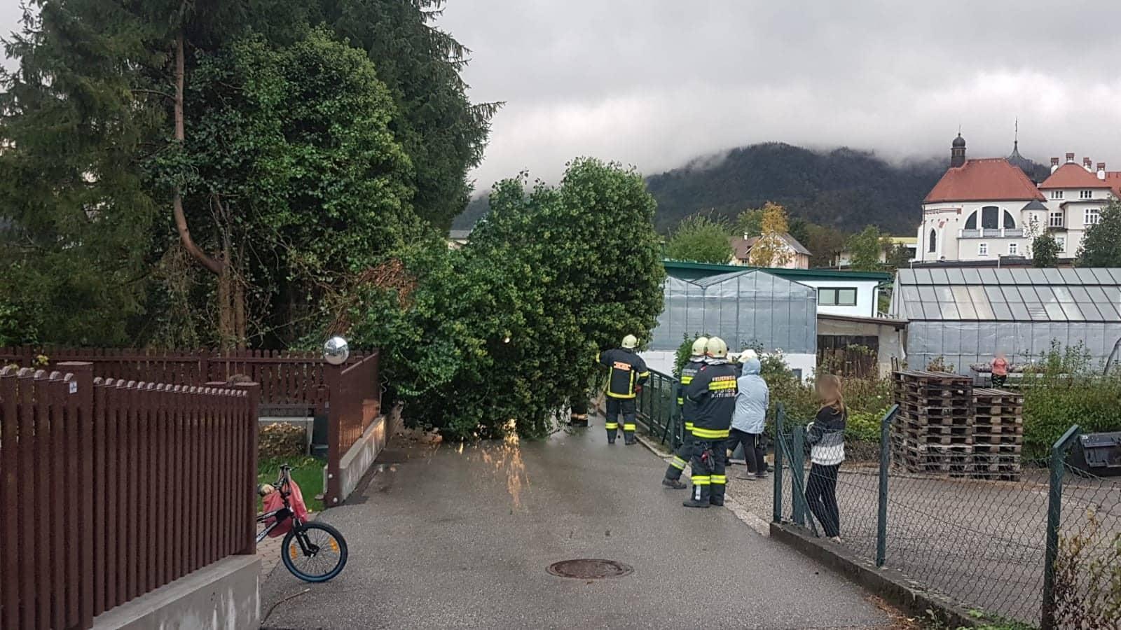 Sturmschaden – Baum über Straße