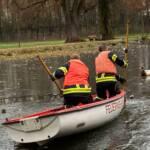 Vier Feuerwehrmänner retten eine Ente