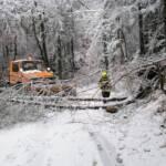 Einsätze aufgrund der Schneefälle