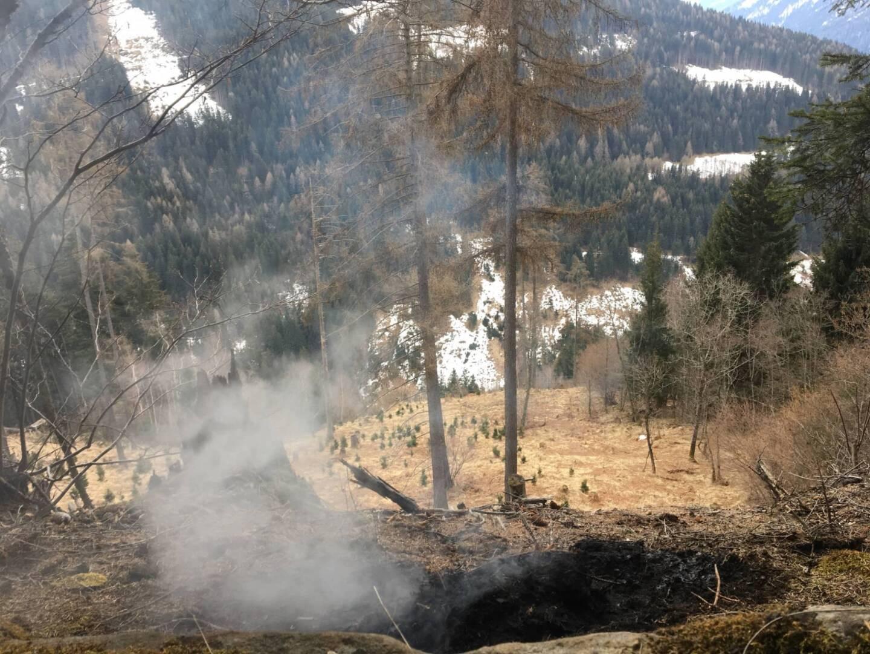 Waldbrand frühzeitig verhindert