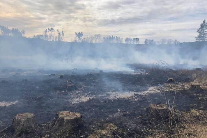Wald- und Fahrzeugbrand in Raabs an der Thaya