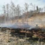 135 Feuerwehrleute verhindern zwei Großbrände