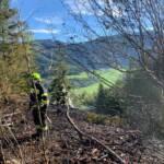 6 Feuerwehren löschten Waldbrand in Lassing