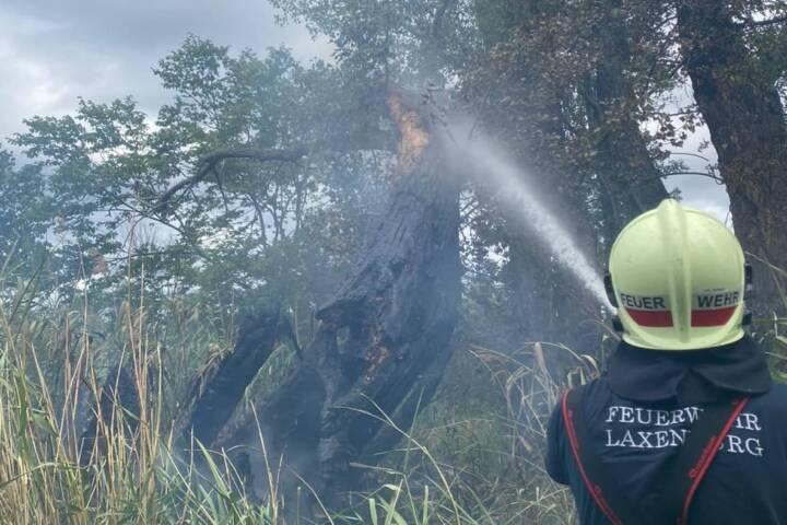 Flurbrand in Laxenburg