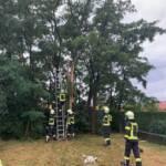 Baum droht nach Blitzschlag umzustürzen