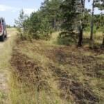 Beginnender Waldbrand Großmittel