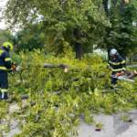 Sturmschäden nach Unwetter über Ebenfurth